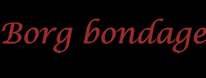 Borgbondage
